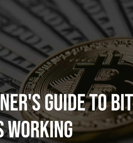 A Beginners Guide to Bitcoin and Its Working