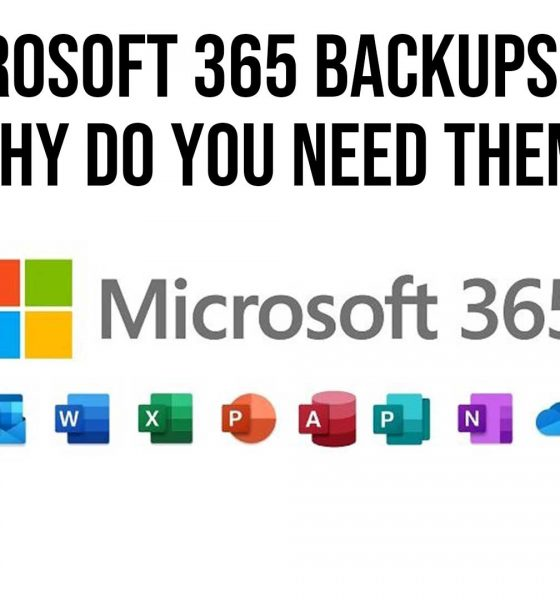 Microsoft 365 Backups and Why Do You Need Them